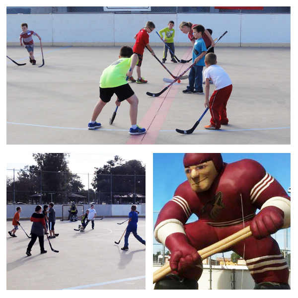 FREE ball hockey clinics for Arizona youth 4-14 years of age